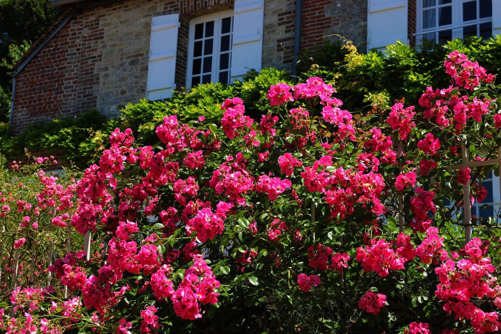 Photography, Landscape, Countryside, Summer, Style, Flowers