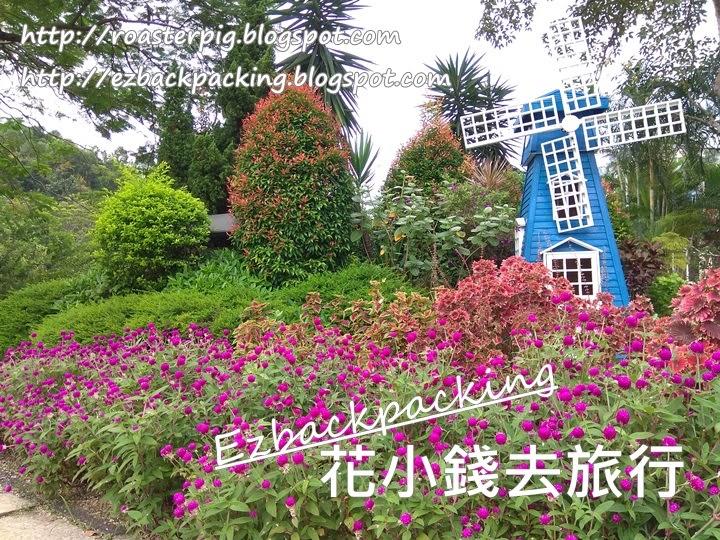 城門谷公園9月花