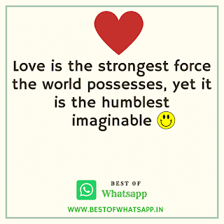 Love Whatsapp Quotes Messages