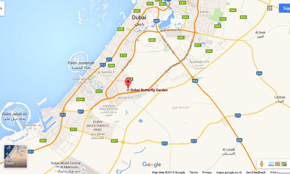 Dubai Butterfly Garden Dubai Map Dubai Tourists Destinations and – Dubai Tourist Attractions Map