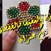 طرزة بالعقيق مع رشمتها وطريقة عملها مع ام عمران -tarza tenbat 2017