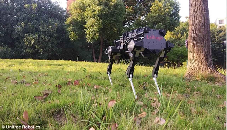 Um assustador robô cão é lançado no mercado global, você pode esta em perigo?