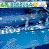 Penyebab Air Aquarium Ikan Mas Koki Berbusa: Padahal Air Bening dan Baru Saja Diganti?