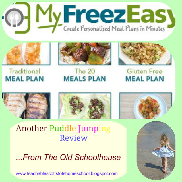 Hashtags: #hsreviews #freezeasy #freezermeals #5dollardinners #freezercooking, freezer cooking meal plan; freezer meal prep; freezer cooking plan