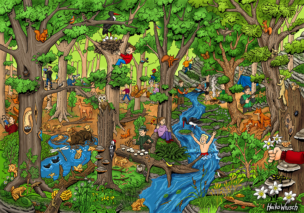 Wimmelbild Wald