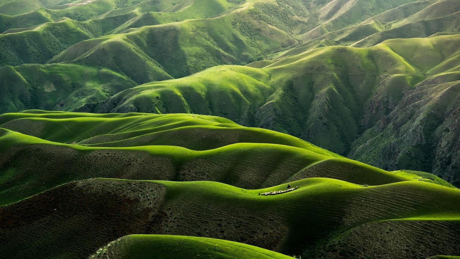 Mountains wallpaper green