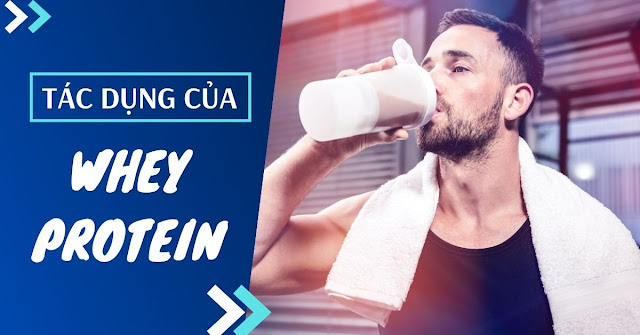 tac dung cua whey protein