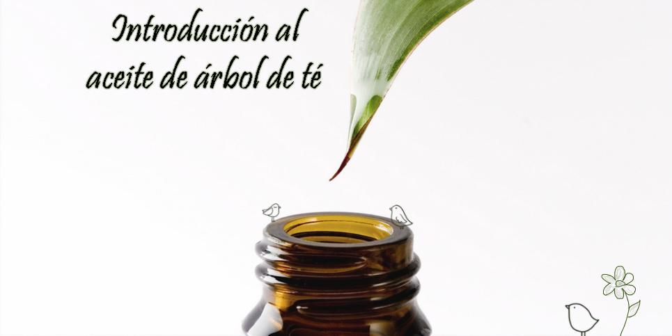 propiedades conservación contraindicaciones aceite árbol de té