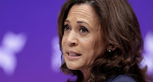 Kamala Harris Tries to Reboot Her Campaign With a Gun Ban