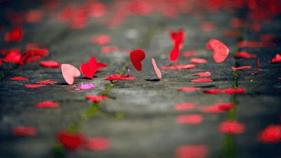 resiko menikah tanpa cinta