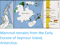 http://sciencythoughts.blogspot.co.uk/2014/10/mammal-remains-from-early-eocene-of.html