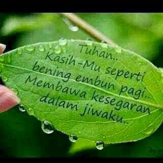 Image result for embun pagi