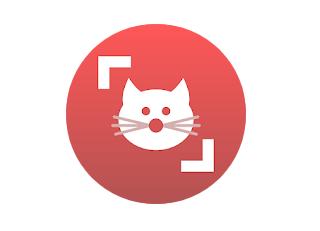 Cat Scanner Premium Apk