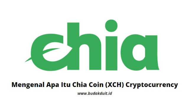 Gambar Logo Chia Coin (XCH) Cryptocurrency