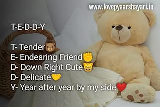 Teddy day shayari images