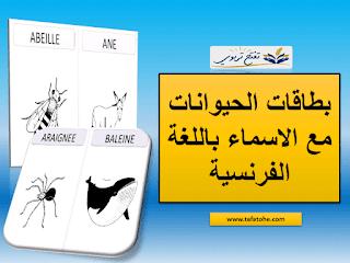 بطاقات الحيوانات مع الاسماء باللغة الفرنسية