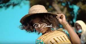 Download Video | Di Namite - Mazingira