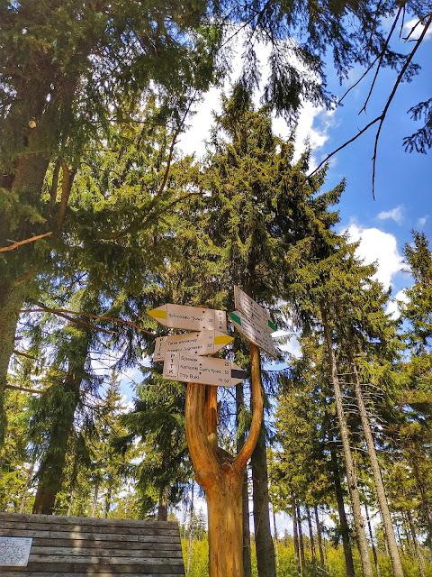 Kozia Równia, trasa na Wielką Sowę, góry w okolicy Wrocławia