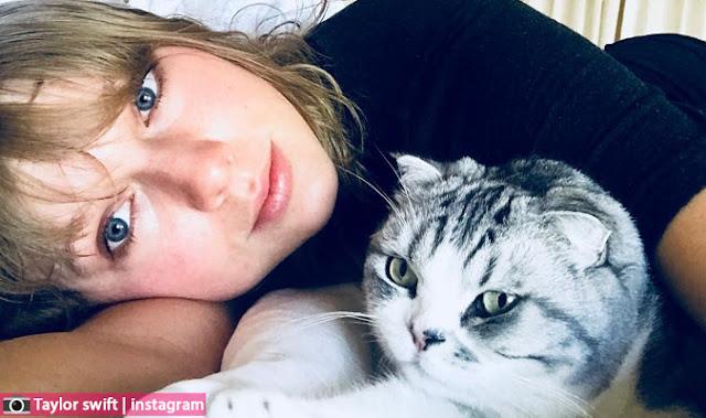 تايلور سويفت في فيلم جديد بعنوان cats قطط