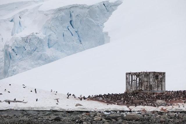 В Антарктиді виявлено явище, що загрожує масштабною катастрофою на Землі