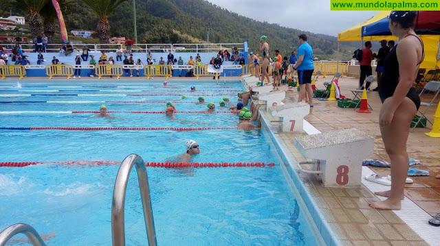 El Cabildo organiza un curso de arbitraje de natación
