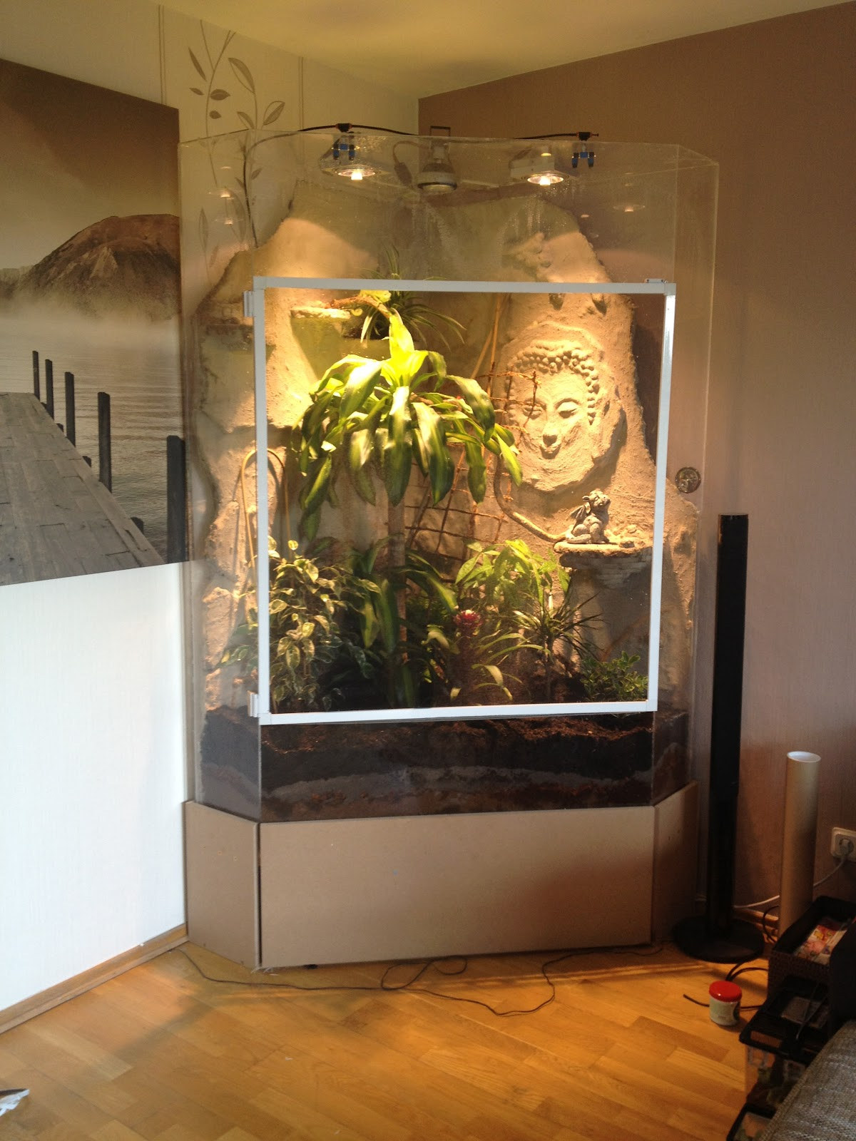jemencham leon frieda das terrarium. Black Bedroom Furniture Sets. Home Design Ideas