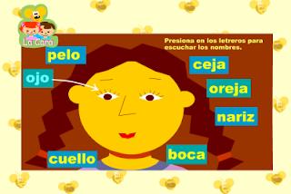 http://www3.gobiernodecanarias.org/medusa/contenidosdigitales/programasflash/Infantil/Cuerpo/cara.swf