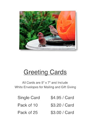 "This is a picture of  the price listing for the Halloween card featured in the previous image. As I daid in that alt text, I designed. It features a Jack-O-Lantern sitting atop a table in my garden. This Jack is ""smiling"" at a male house finch. The card is available via Fine Art America. https://fineartamerica.com/featured/house-finches-trick-or-treating-patricia-youngquist.html"