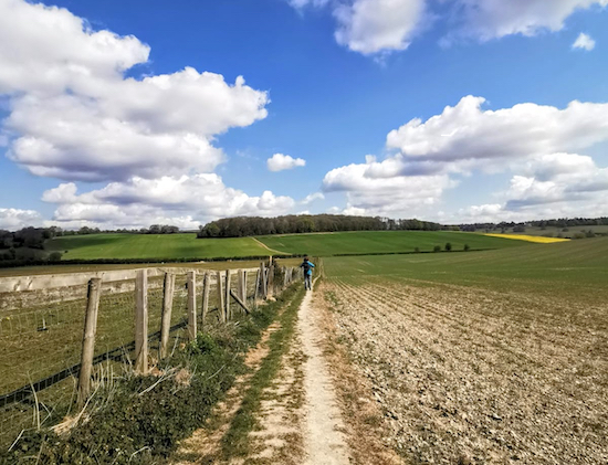 A walker standing at the start of Great Gaddesden footpath 67 (point 8)