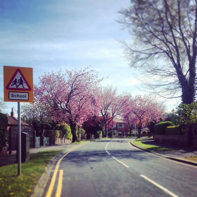 Belgravia Road from Bradford Road Wakefield