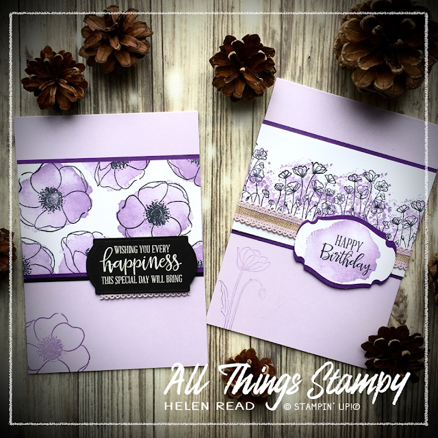 Painted Poppies Stampin Up Helen Read Allthingsstampy Gorgeous Grape Purple Posy