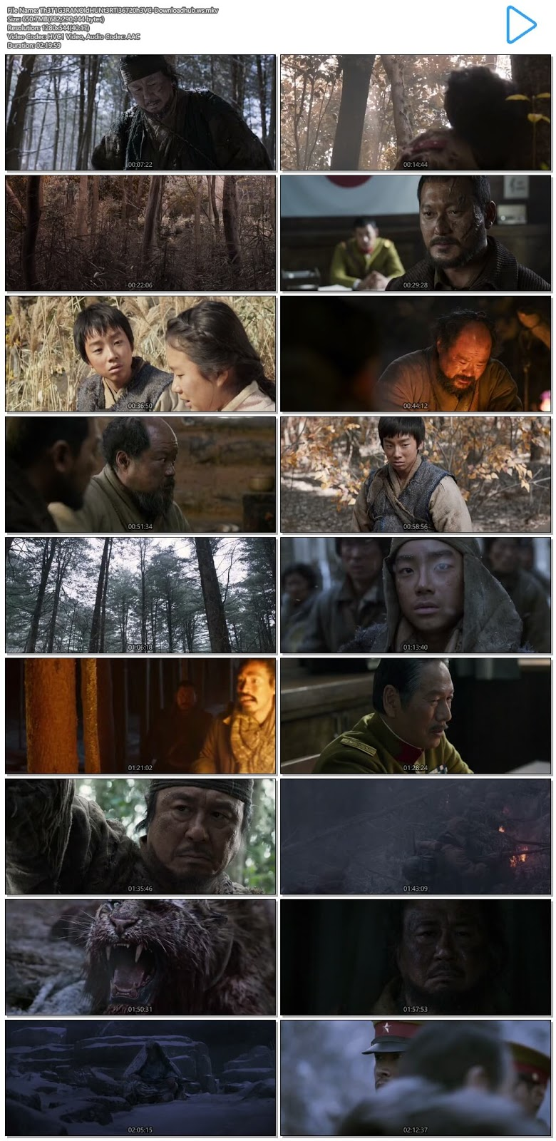 The Tiger An Old Hunter's Tale 2015 Hindi Dual Audio 720p HEVC BluRay Free Download