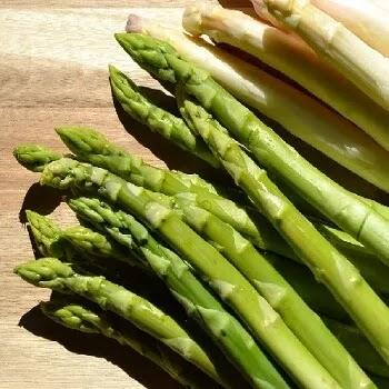 शतावरी, asparagus vegetables name in Marathi