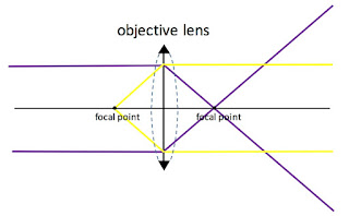 A ray diagram showing how an objective lens works.