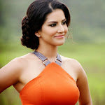 Sunny Leone latest hot wallpapers in jackpot