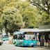 バス運行支援サービスの提供を開始します