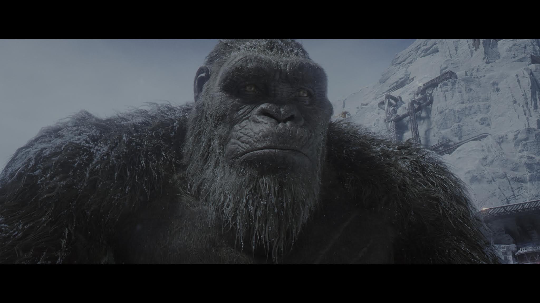 Godzilla vs Kong (2021) 4K WEB-DL HDR Latino