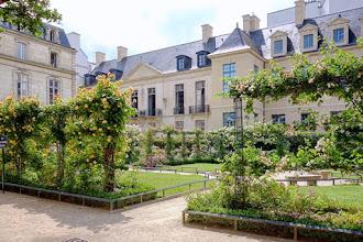Paris : Square Saint-Gilles-Grand-Veneur-Pauline-Roland, un jardin secret du Marais, une roseraie au printemps - IIIème