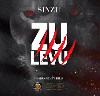 sinzu zoo level
