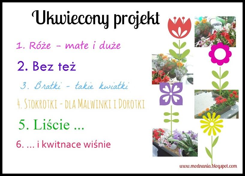 http://belgijska.blogspot.com/2015/08/ukwiecony-projekt-podsumowanie.html