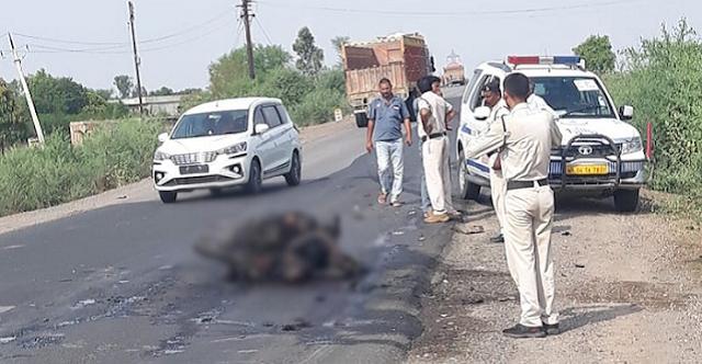 दर्दनाक हादसा: बाइक में लगी आग, युवक जिंदा जल गया | REWA NEWS