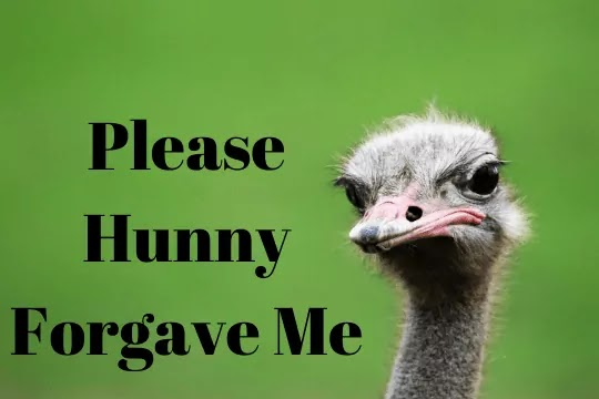 Im Sorry Meme With Funny Images | Funny Sorry Quotes For Mistake