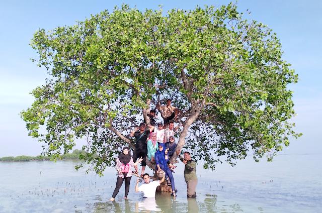 Pulau Pari Kepulauan Seribu