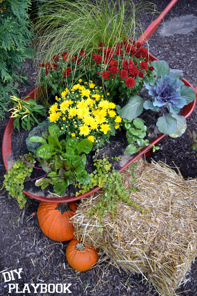 fall flowers in planter: Wheelbarrow Planter | DIY Playbook