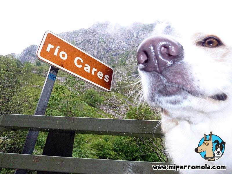 Can de Palleiro al inicio de la Ruta del Cares en Asturias