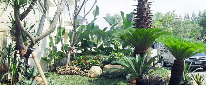 Tukang Taman Manado