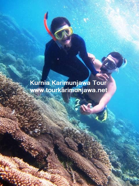 honeymoon di Karimunjawa