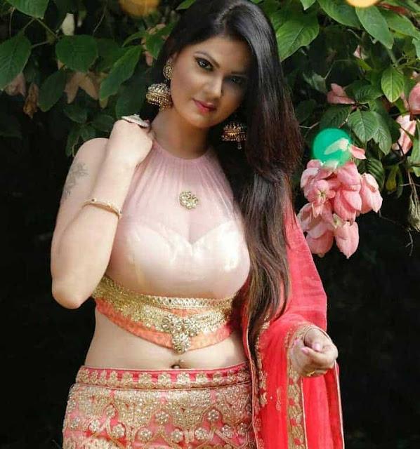 Aabha Paul Sexy Navel Photos