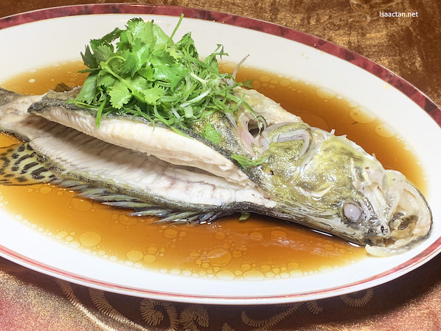 Hong Kong Style Steamed Mandarin Fish with Superior Soya Sauce