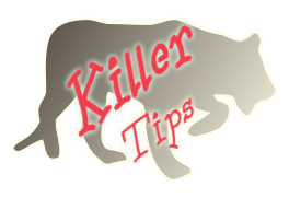 Killer tips to Get hired by FAANG employers